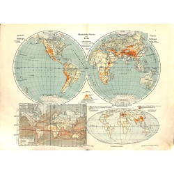 1551 print map 1902 - THE WORLD 1:100.000.000size:44 x 32 cm