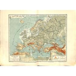 1553 print map 1902 - EUROPE 1:20.000.000size:44 x 32 cm
