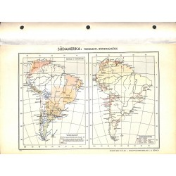 1819 map/print-SOUTH AMERICA CATTLES  printed: 1954
