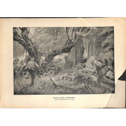 2143 WWI print 1914/18-Bialowieska german soldier forrest battle ,size:47 x 32,5 cm, printed on normal paper-,this print c