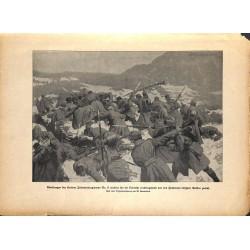 2303 WWI print 1914/18-Krainer Infantry regiment No. 17 Oslavija,size:23,5 x 32,5 cm, printed on normal paper-,this print