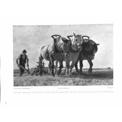 """6080-horses farmer """"Pflügen""""by Julius Paul Junghannspainting"""