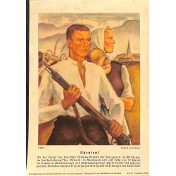 10347 Third Reich print  Kärnten /Austria farmers,the Ostmark in the fight of Independence, printed 1940