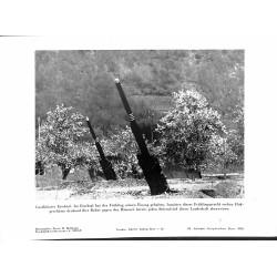 13824 WWII press photo print Geschütztes Eschtal, Artillery Photo Hoffmann