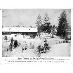 13871 WWII press photo print Beste Fürsorge für die vierbeinigen Kameraden Russia 1942, Serie 1498d