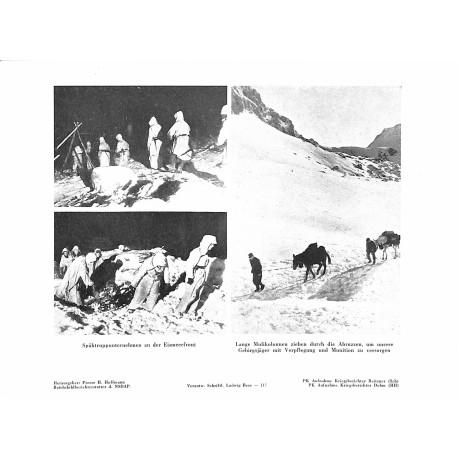 13890 WWII press photo print Spähtruppunternehmen an der Eismeerfront Photo Hoffmann
