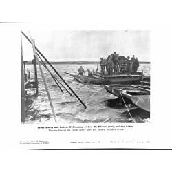 13892 WWII press photo print Trotz Sturm und hohem Wellengang stehen die Pferde ruhigh auf der Fähre