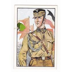 2343-Adjudant eines Sturmbannes Nr. 31